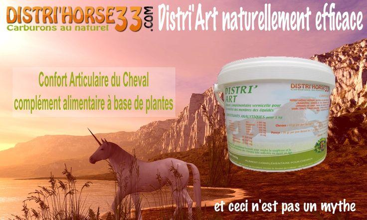http://www.distrihorse33.com/arthrose-chez-le-cheval/175-distri-art-arthrose-du-cheval-locomotion-du-cheval.html