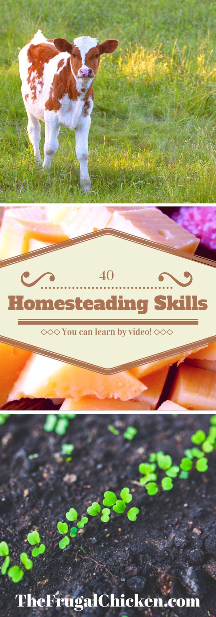 40 Essential (and easy) homesteading/self-sufficency skills you can learn by video. An easy, comprehensive guide, plus what to buy and where to buy it! #homesteading #diy:
