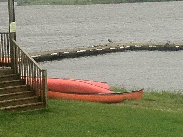 The pontoon at Tamar Lake