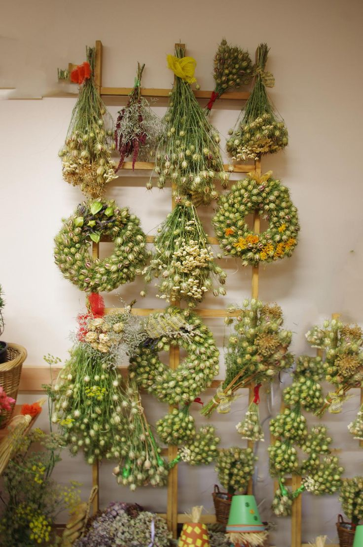 Jaké květiny jsou vhodné k sušení? -  ( DIY, Hobby, Crafts, Homemade, Garden, Creative, Ideas)