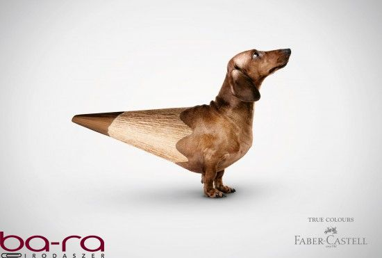 """Coloured """"animals"""" by Faber-Castell."""