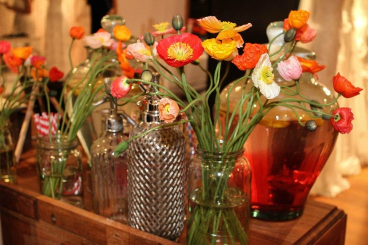 Pretty Daisy a Day poppies and vintage soda siphons.