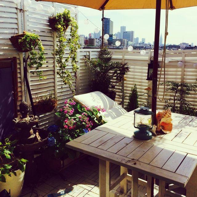 chiさんの、ベランダガーデン,多肉植物,IKEA,観葉植物,ソーラーファウンテン,貝殻,リビング,のお部屋写真