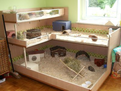 I like the idea of using the wooden dish rack to work as a hay feeder