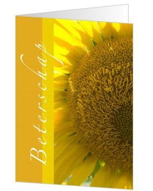 Stuur deze zonnebloemkaart en je maakt de ander gegarandeerd vrolijk.  Deze kaart staat bij de collectie 'Omdat ik... hoop dat je snel beter wordt' van kaartopmaat.nl