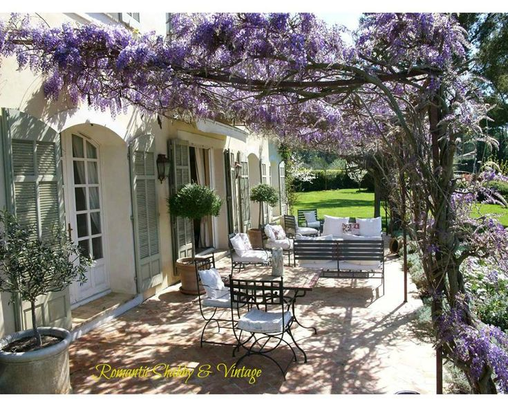 Terrace in France with wisteria