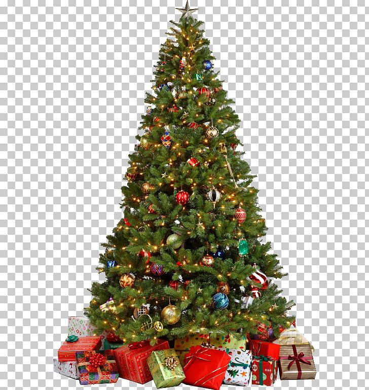 Christmas Tree Png Christmas Tree Christmas Tree Christmas Christmas Decorations