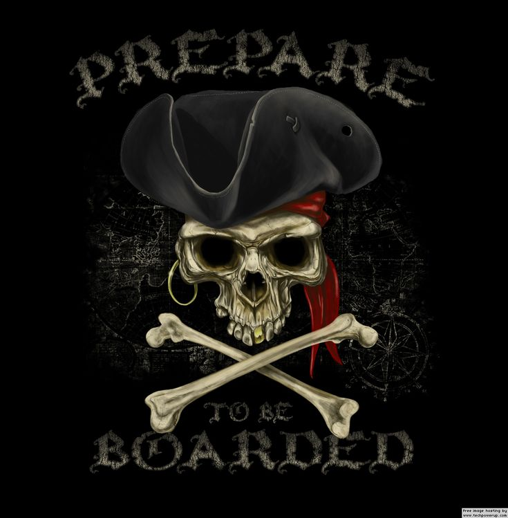 Pirate Skull | Pirate Bay Founders Stare At Jailtime as Supreme Court Rejects Appeal ...