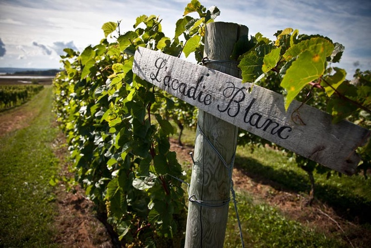 Experience Nova Scotia's growing wine scene with a  Wines & Vistas Tour for two provided by Go North Tours. With unique  itineraries including wine tastings and gourmet Halifax  cuisine, combined with beautiful vineyard vistas along the ocean, you  won't soon forget your Halifax winery experience. Visit www.destinationhalifax.com/boh to PIN & WIN this Halifax experience, return airfare, car  rental and more!