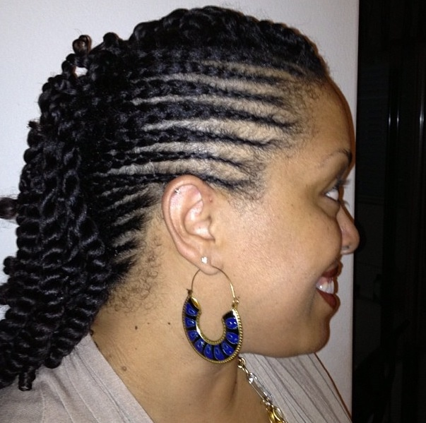 Twist/braid style. Natural hair | African American hair styles