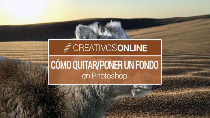 Cómo quitar o poner un fondo a una foto en Photoshop