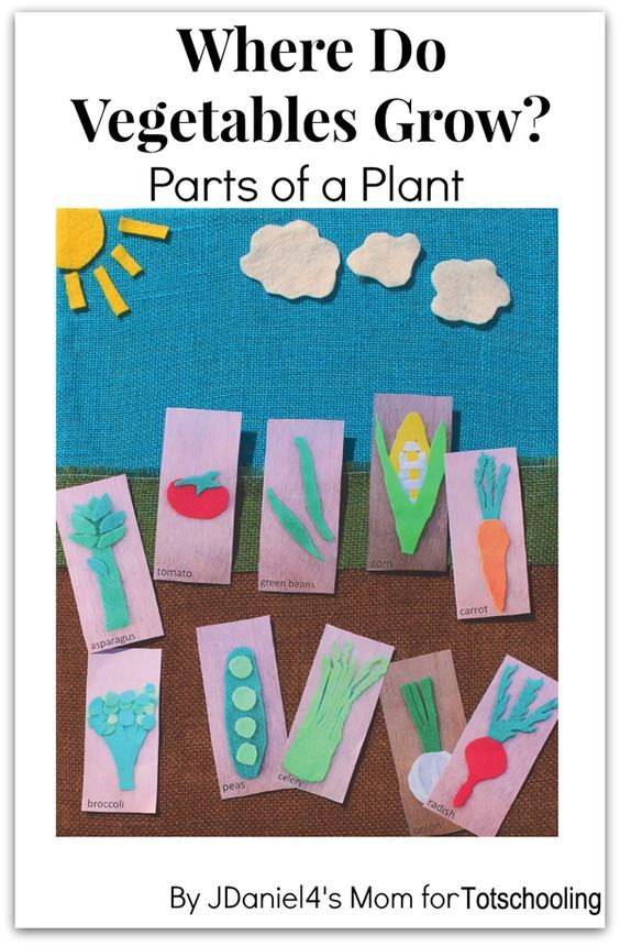 Where Do Vegetables Grow? Gardening Craft with Free Printable Vegetable Cards: