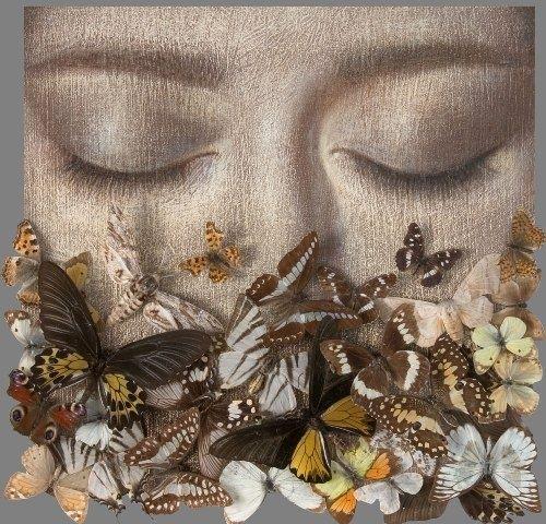 17 meilleures id 233 es 224 propos de comment dessiner un papillon sur drawing lesson