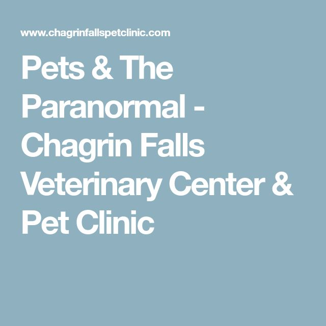 Pets & The Paranormal - Chagrin Falls Veterinary Center & Pet Clinic