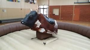 Mechanical Bull from Castle Capers Adelaide www.castlecapers.com.au