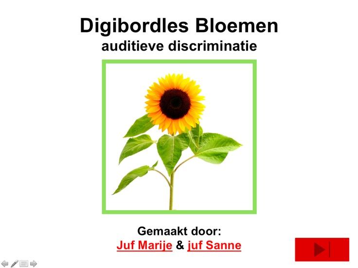 Digibordles Bloemen- In deze les oefenen de kinderen het verdelen van woorden in lettergrepen. De mooie bijbehorende woordkaarten van deze bloemen zijn te vinden op de site van juf Sanne met nog veel meer mooi verwerkingsmateriaal over de Lente.