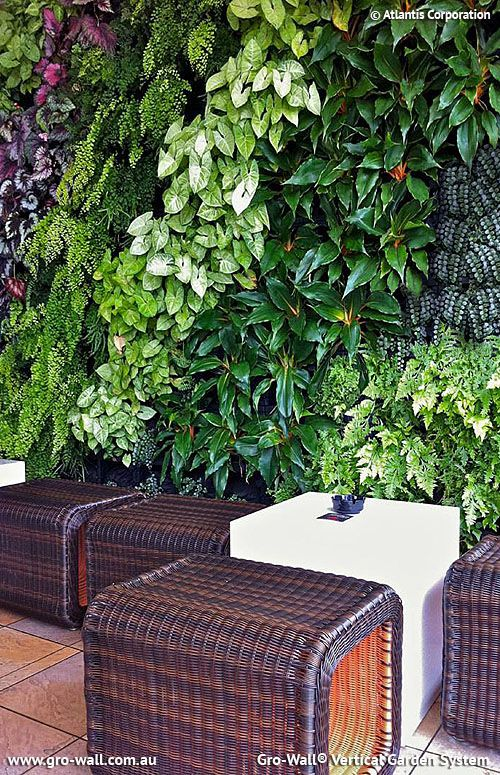 Vertical Garden Ideas Australia 398 best vertical garden images on pinterest | vertical gardens