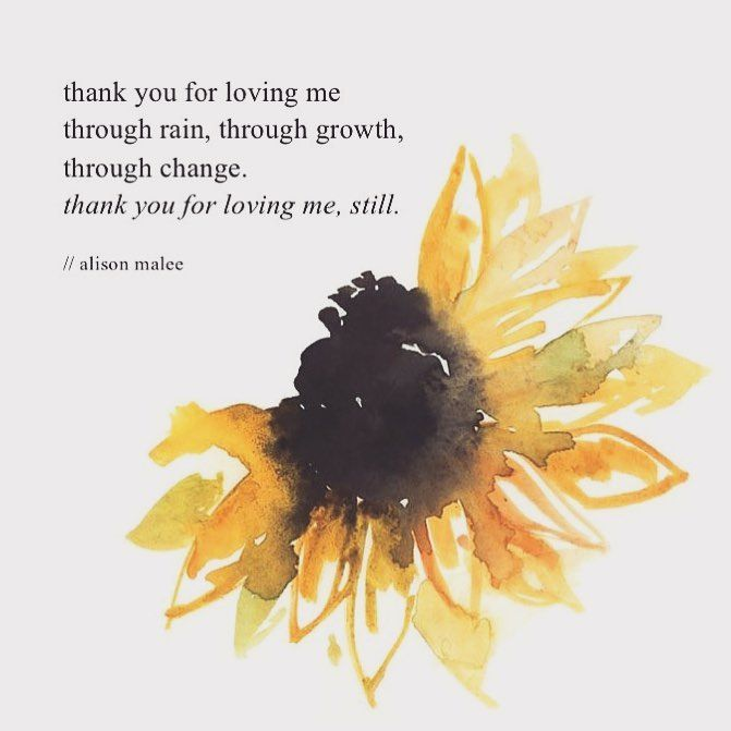 The 25+ best Sunflower quotes ideas on Pinterest   Be ...