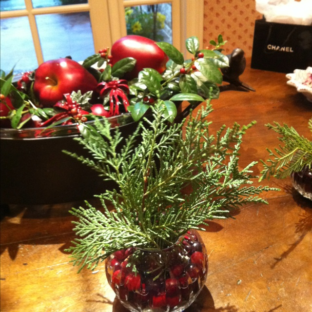 Christmas greenery with cranberries flowers pinterest for Artificial cranberries decoration