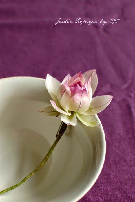 Lotus tipsy princess. Corsage.