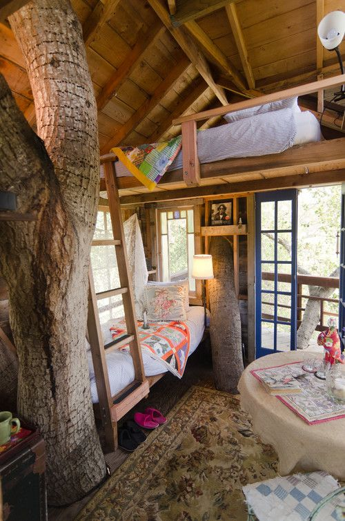 Oh My Gosh!  I would LOVE to live in this tree house!!!  Seriously - just need an elevator for Charlie!