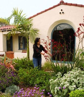 Lawnless in Ventura, CA. Water-conserving gardens can be as colorful as any other. The front yard of Rick Cole, Ventura's city manager, is blooming proof. Get planting ideas from this Southern California garden - sunset garden