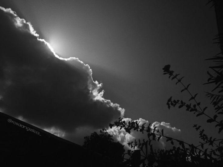 #blancoynegro #blackandwhite #black #white #diasoleado #sunday #sun #flores #flowers #imagenes #pics #mipic #nubes #atardeceres #amanecer #vintage #retro #cool #paisajes #paisajesbonitos #vistas #vistashermosas #diaopaco #vsco #vscocam #filtro #filtrovscocam #filtroblancoynegro #picsart #rosaangelica #instagram #siganme #en #instagram #myinstagram