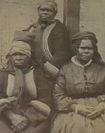 The picture shows Tasmanian Aborigines (1860). The pictures of the Tasmanians come from the following website: www.tasmanianaboriginal.com.au/ancestors.htm www.tasmani...