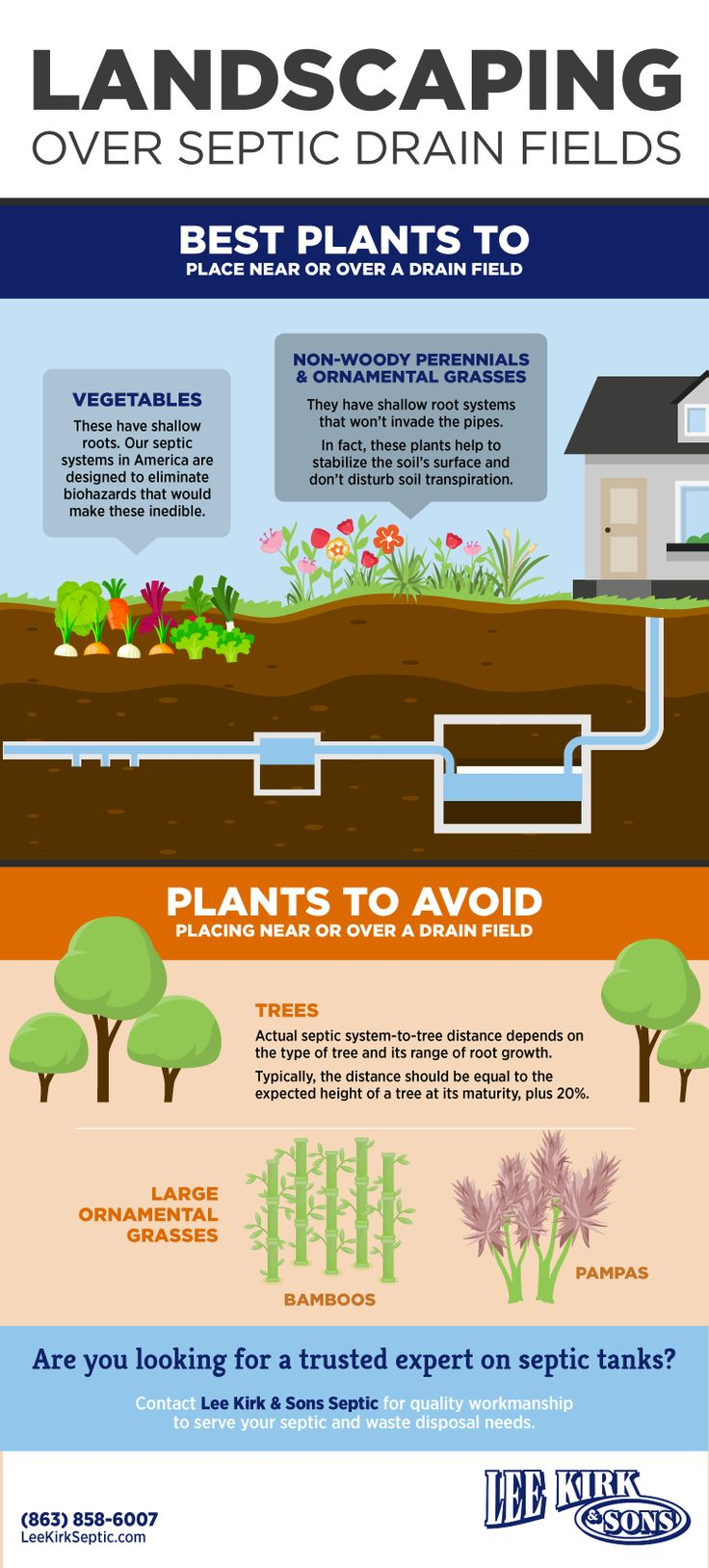 Perfect Plants to Place Over a Septic Drain Field