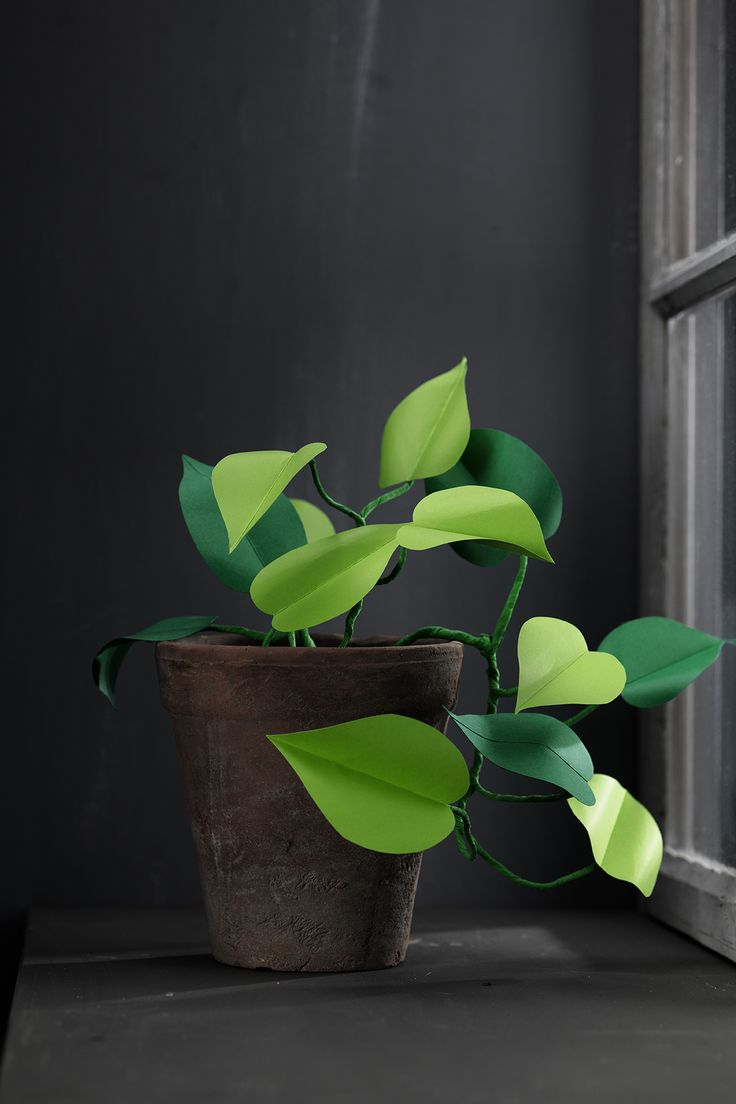 Paper plant www.pandurohobby.com Paper by Panduro #decoration #DIY #paperfolding #folding #paper #art #panduro #origami #papper #pappersvikning #vika #plant #leaf #växt