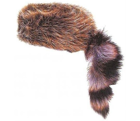 Coonskin Hat: 17 Best Images About I Remember... On Pinterest