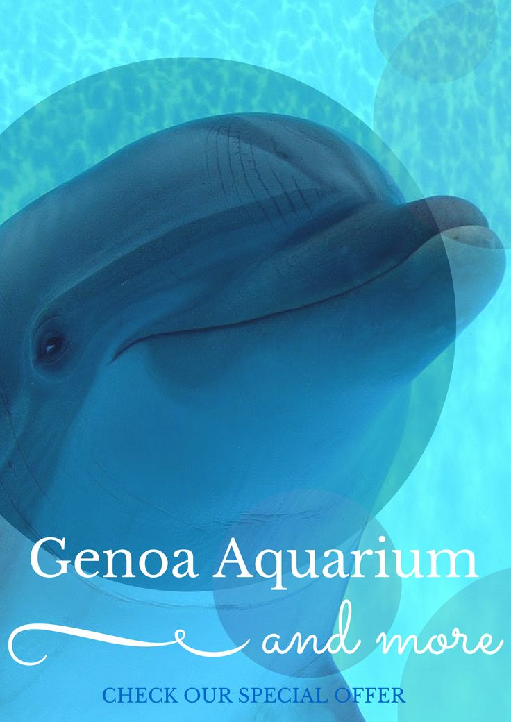 For a minimum stay of two nights, from October 7th 2015 to April 21st 2016, come and enjoy both the area of the Cinque Terre, especially charming and quiet this time of the year, that the splendid Aquarium of Genoa!  Check our special offer.