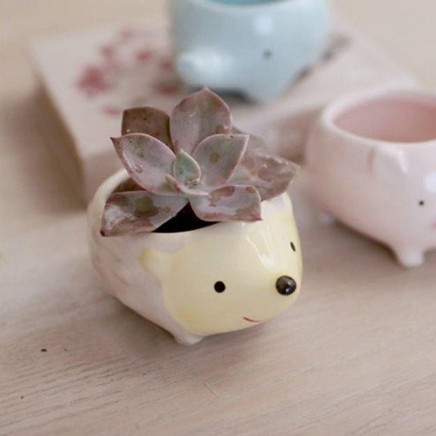 A little flower pot who's just too cute to handle. | 32 Things To Make Your Bedroom Cute AF