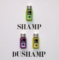 SHAMP DUSHAMP- Sergio Vanni