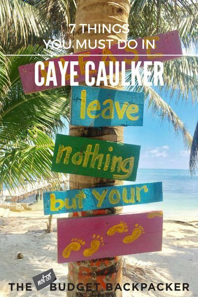 From swimming with sharks to skulling rum punch, here's all the things to do in Caye Caulker. Things to do in Caye Caulker, Things to do in Caye Caulker Belize, Belize travel, Caye Caulker travel, 48 hours in Caye Caulker, Where to go in Belize, Things to do in Belize, What to do in Caye Caulker, What to do in Belize