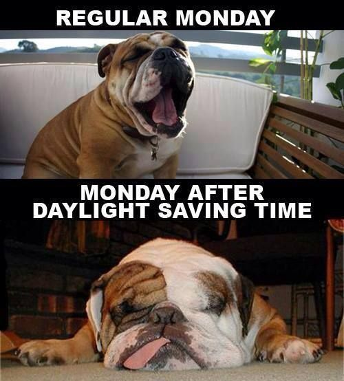 Regular Monday - Monday after daylight saving time