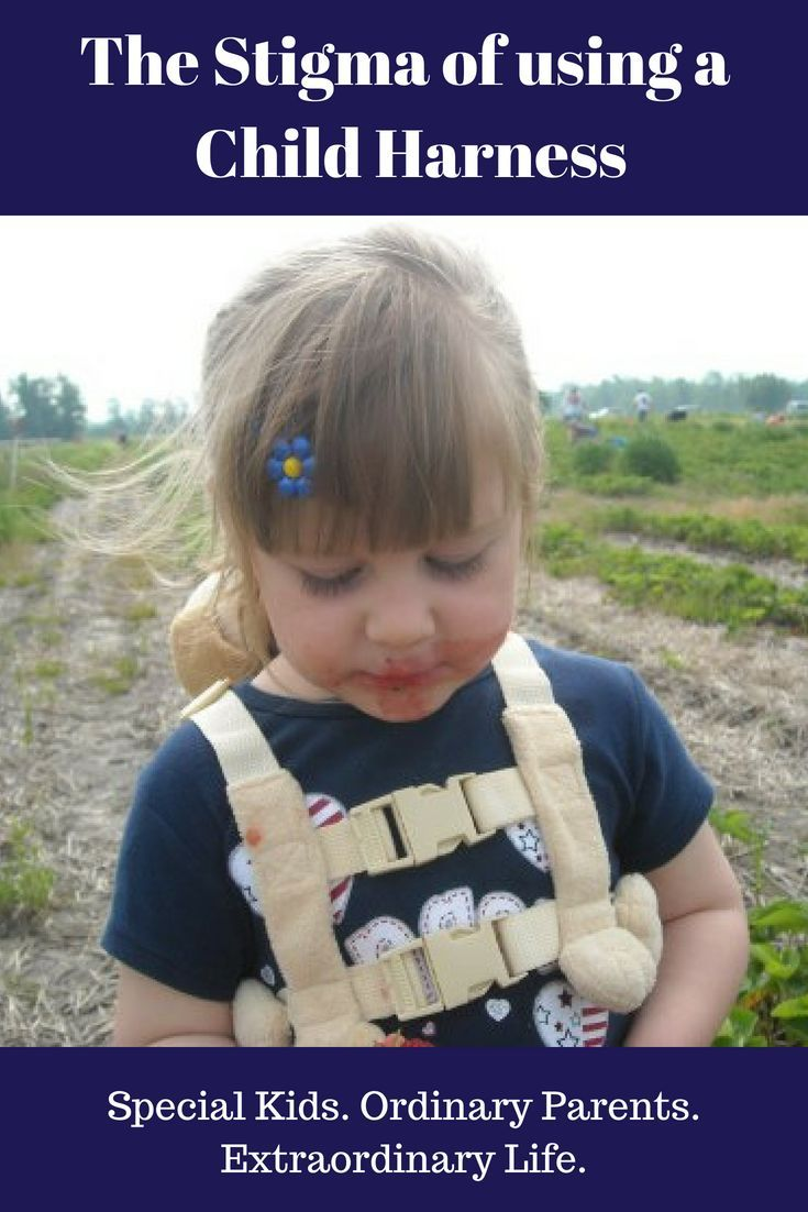 Harnessing Childrens Natural Ways Of >> Harness Use For Special Needs Children Who Have Not Developed Safety