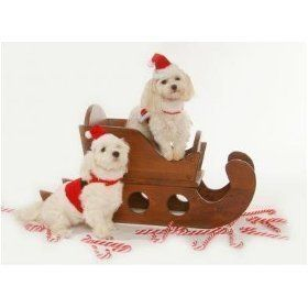 Dog Santa Suit - Santa Claus Santa Boy Harness Dog Christmas Outfit w/ Matching Hat & Leash - Large Santa Boy Harness Suit with D-Ring, Matching Hat and Leash - Please Note D- Ring is only Read  more http://dogpoundspot.com/dog-santa-suit-santa-claus-santa-boy-harness-dog-christmas-outfit-w-matching-hat-leash-large/  Visit http://dogpoundspot.com for more dog review products