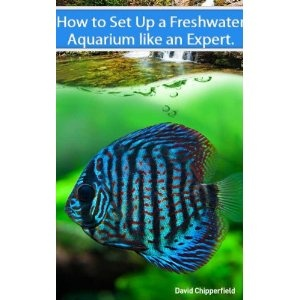 Freshwater Aquariums: How to Set Up One Like an Expert - The New Bestseller (Aquarium and Turtle Mastery) (Kindle Edition)