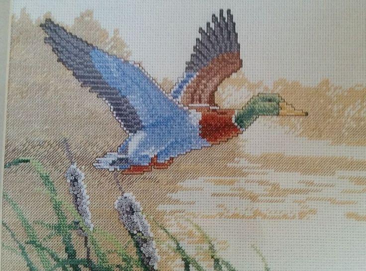 "Classic Mallard Duck Counted Cross Stitch Kit Simplicity 10"" x 8""  Brad Jackson #Simplicity #CountedCrossStitchKit"