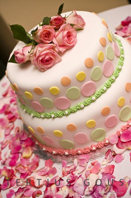 Polkadot Cake