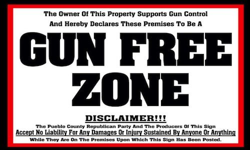 Gun control controversy essay