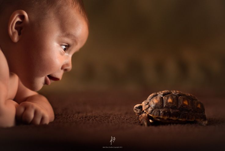 Babies by Jake Olson Studios on 500px