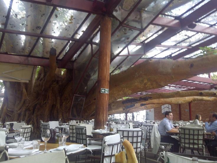 Figueira Restaurant, Sao Paulo