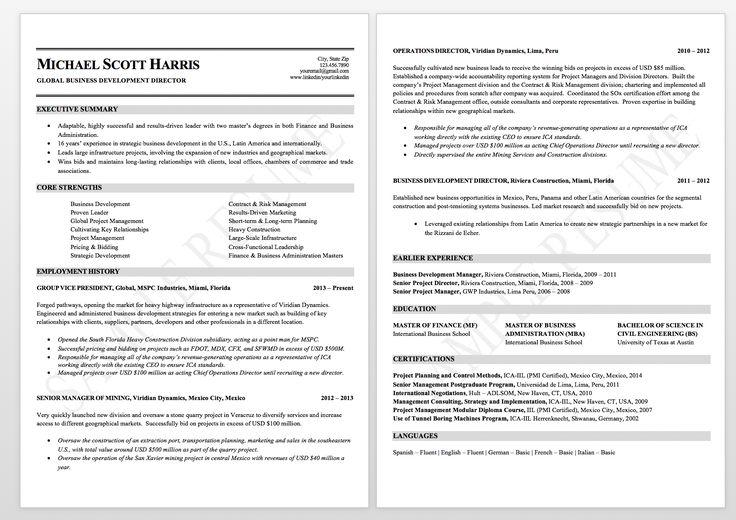 Executive resume sample business director resume
