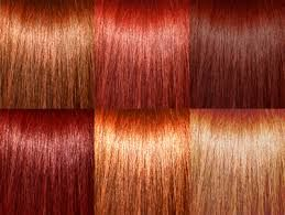 Image result for red hair color chart