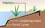 steps for building a pond #watergarden