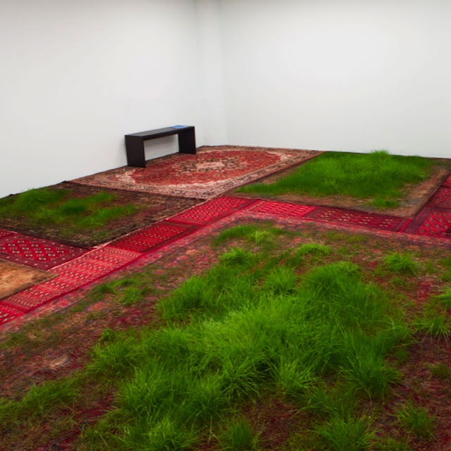 Artist Martin Roth literally brings nature inside the gallery. Inspired from the idea that carpets were originally reproductions of gardens, he cultivates real grass on rugs. His work creates a living process that slowly occurs in time.