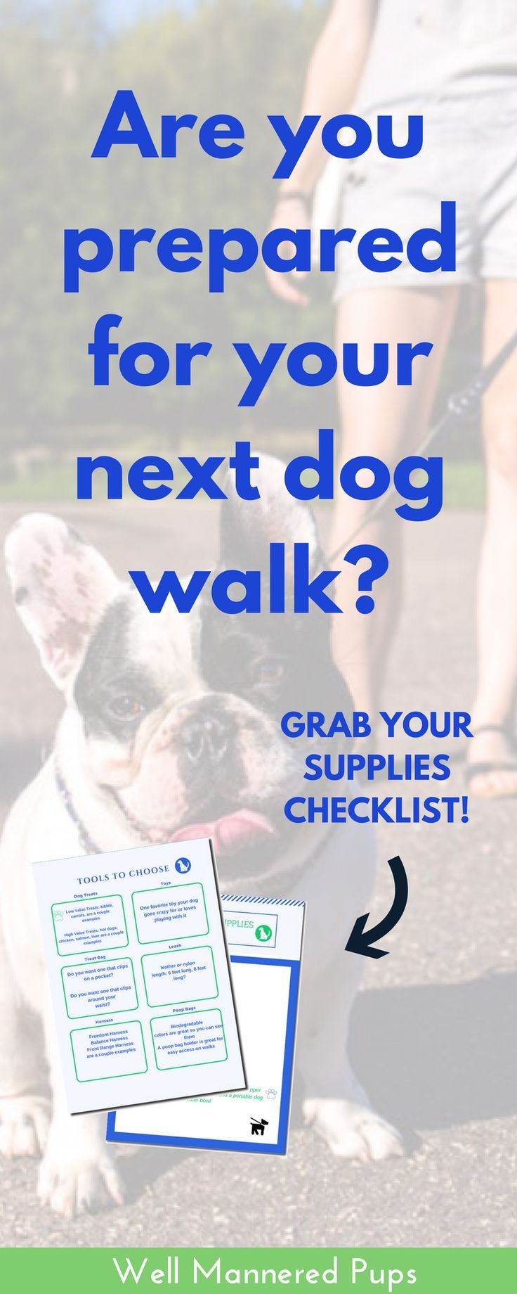 Do You Have The Right Dog Walking Supplies Sign Up For My Newsletter For Dog Training Tips And Other Tips For Dog Owners A Dog Walking Dog Training Dog Clinic