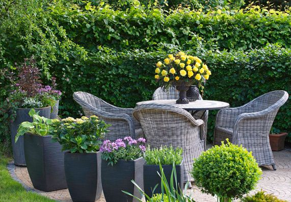 Gartenmobel Reinigen Und Richtig Pflegen Ratgeber Obi Kubelpflanzen Garten Pflanzen